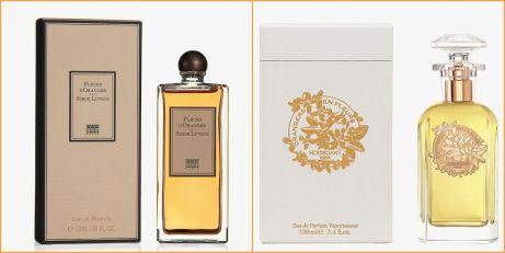 Houbigant Orangers en Fleurs Serge Lutens Fleurs d'Oranger