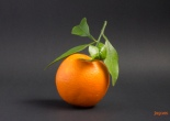 Mandarino di Sicilia Néroli Amara